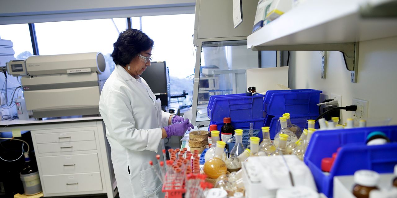 Behind the Biotech Stock Rally: New Deals and Easing Political Worries