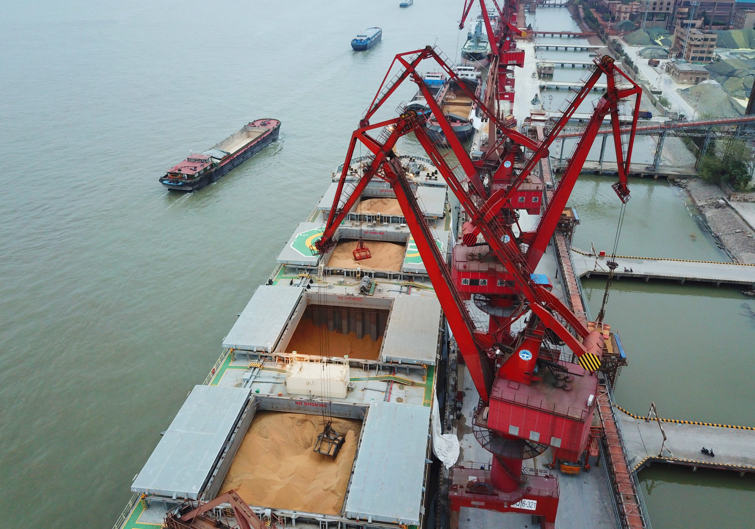 China's November soybean imports from US rise as tariff-free cargoes arrive