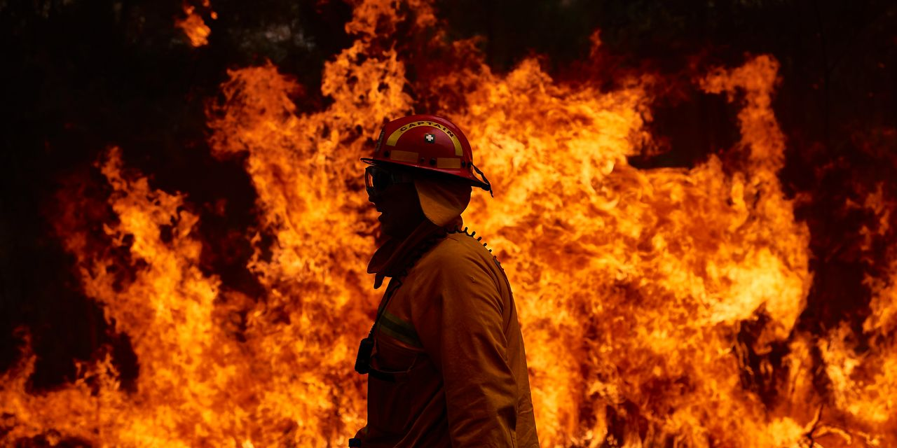 Australian Wildfires Aren't Enough to Burn Out Big Coal