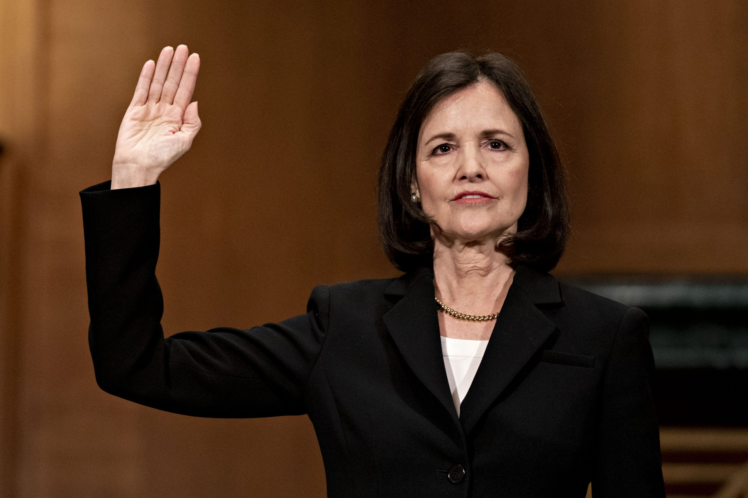 Trump Fed nominee Judy Shelton hammered by Democrats in confirmation hearing