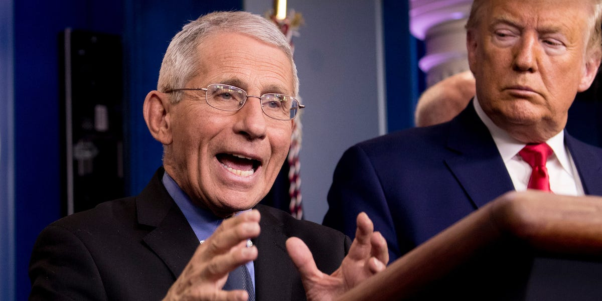 Coronavirus: Fauci 'really confident' those who recover will be immune