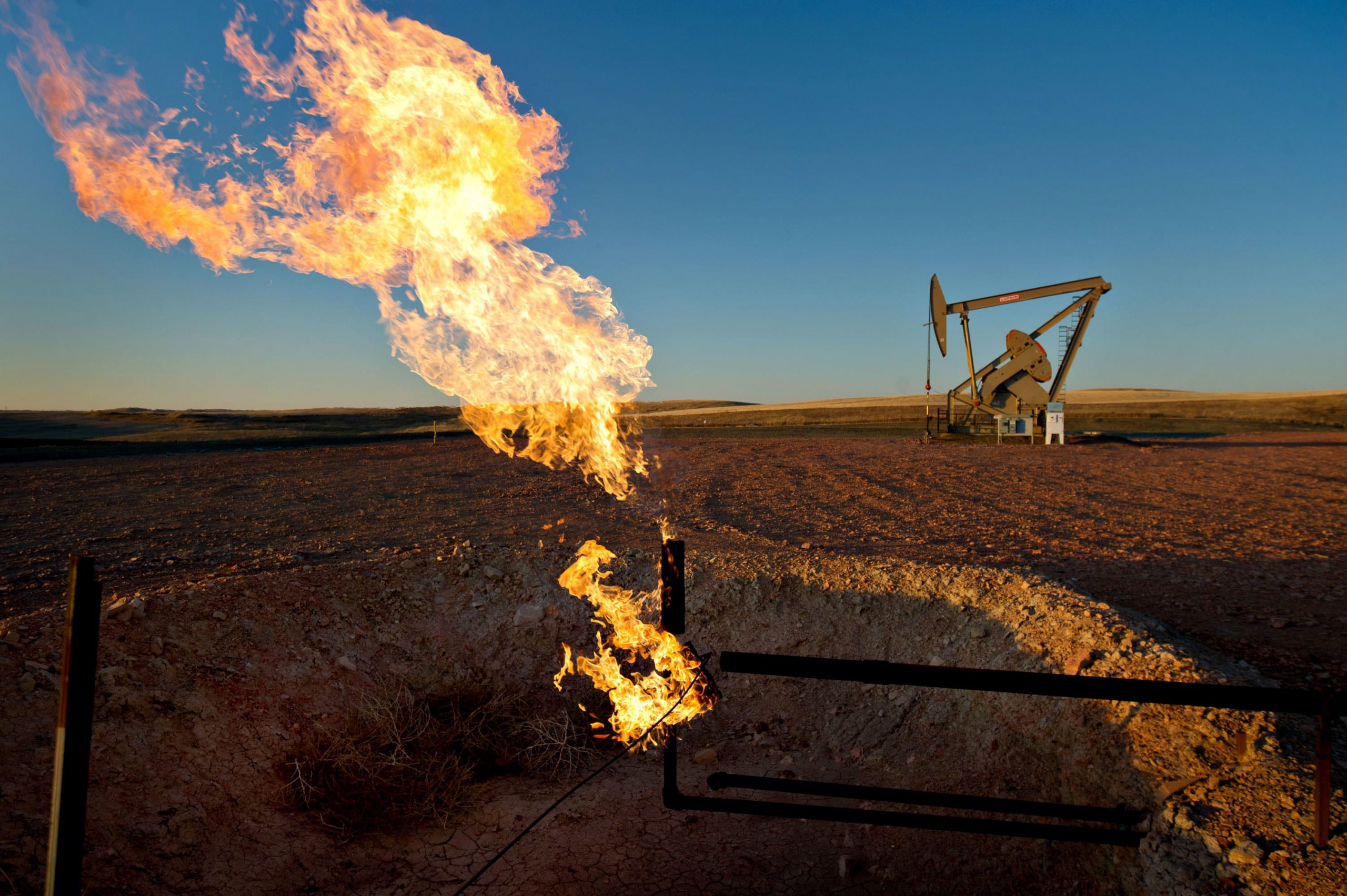 The oil industry shakeout is just beginning with more production cuts and bankruptcies ahead