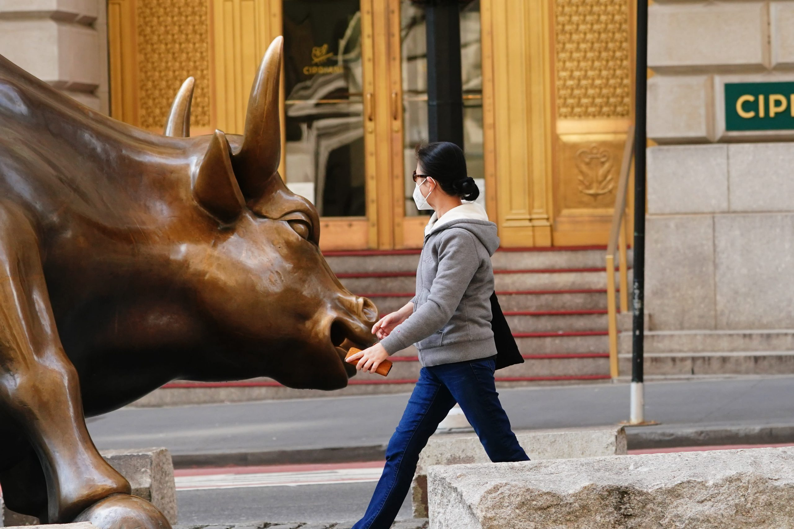 Green shoots: Wednesday was one of the most positive days for the stock market on many fronts