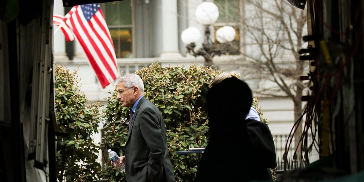 Fauci: COVID-19 shows 'unacceptable' disparities for African Americans