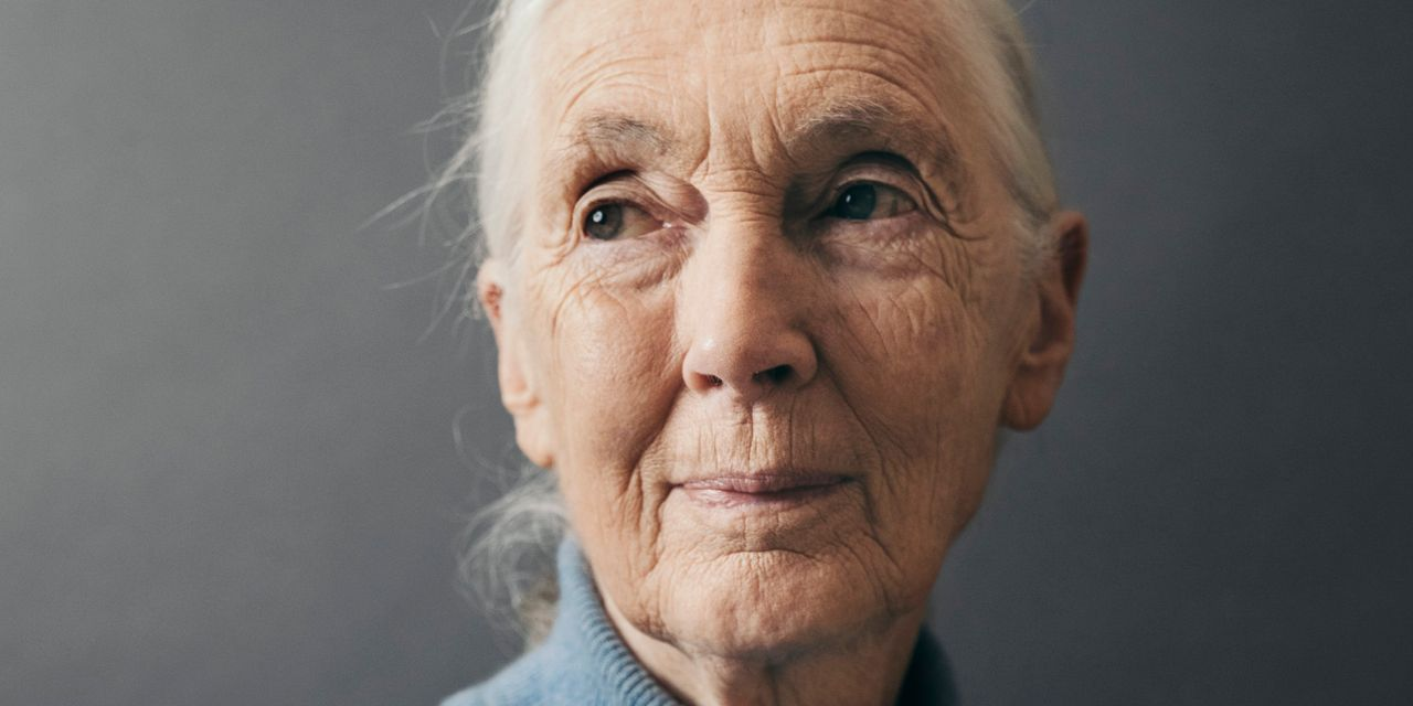 Jane Goodall Hopes the Coronavirus Pandemic Will Wake People Up