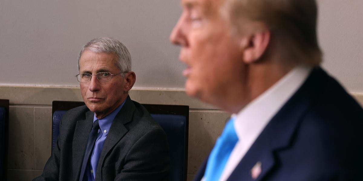 Fauci slams White House, Peter Navarro for trying to discredit him